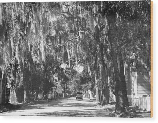 Savannah II Wood Print by Magda Levin-Gutierrez