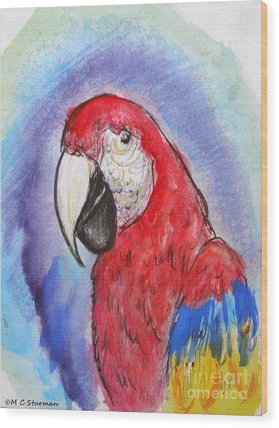 Scarlet Macaw Wood Print by M c Sturman