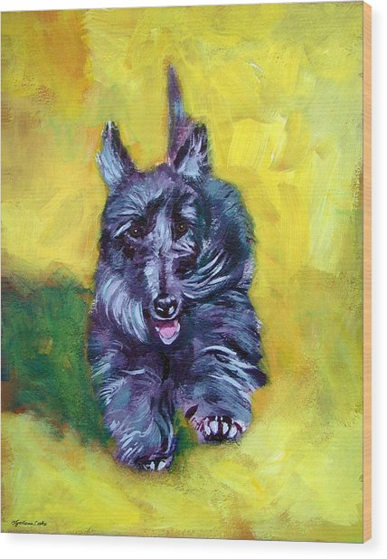 Scottie Trot  - Scottish Terrier Wood Print by Lyn Cook