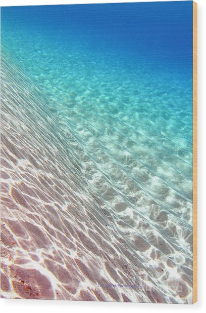 Sea Of Tranquility Wood Print