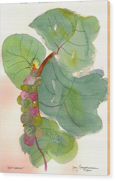 Seagrapes Wood Print