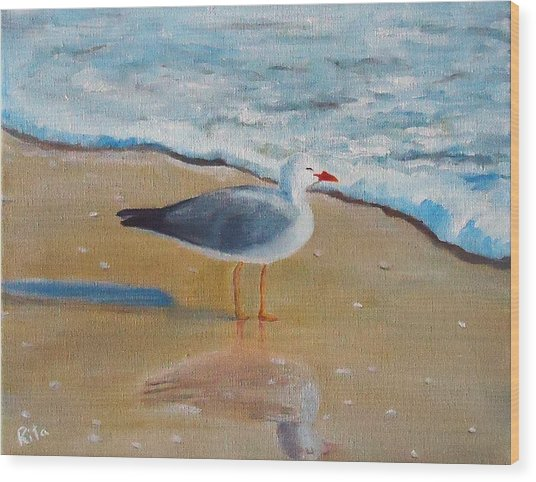 Seagull By The Shore Wood Print