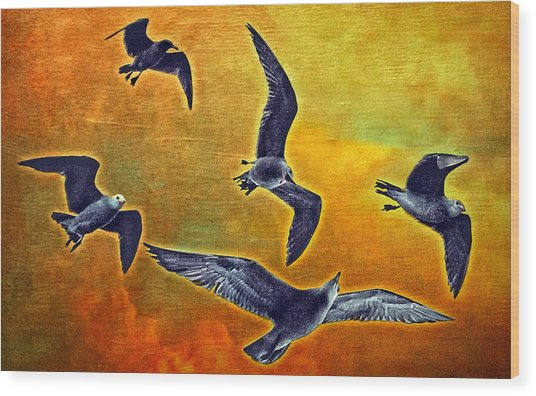 Seagulls In Flight Wood Print by Donna Pagakis