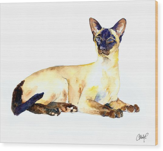 Seal Point Siamese Cat Old Wood Print
