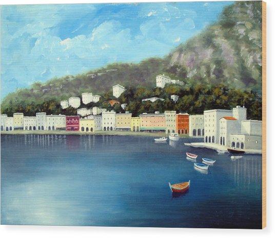 Seaside Town Wood Print