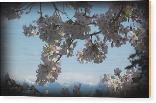 See The Cascades Wood Print by Lee Yang