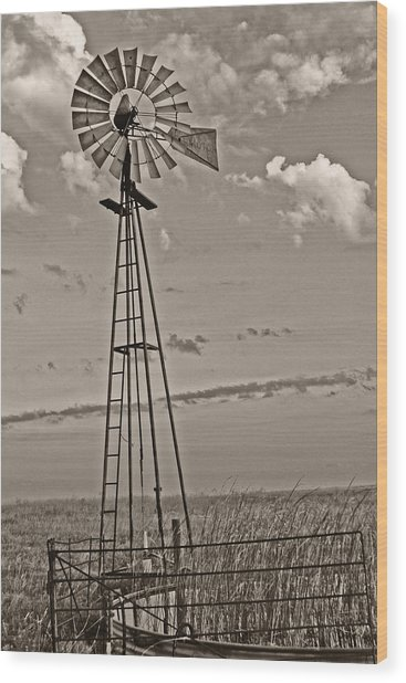 Sepia Windmill And Tank Wood Print