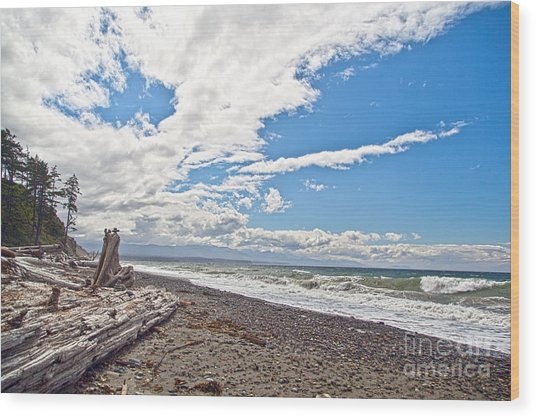 Sequim Beach Wood Print by Molly Heng