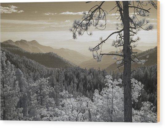 Sequoia View Wood Print