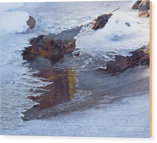 Serendipity In Ice  Wood Print