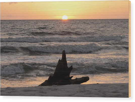Wood Print featuring the photograph Serendipity Sunset by Judy Hall-Folde