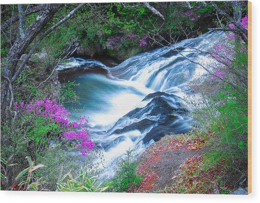 Serenity Flowing Wood Print
