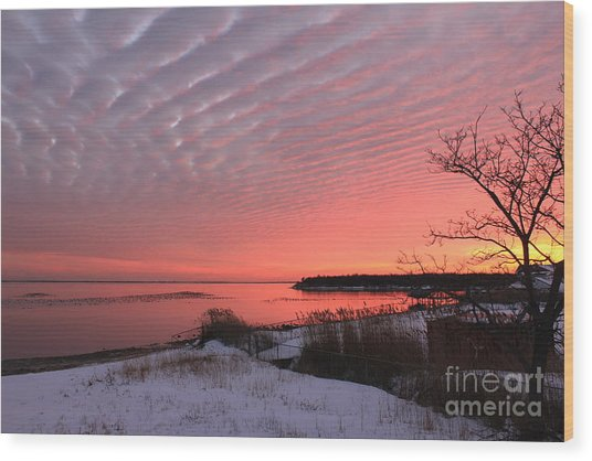 Serenity Wood Print by Scenesational Photos