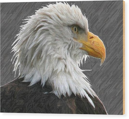 Serious Eagle Wood Print by Carrie OBrien Sibley