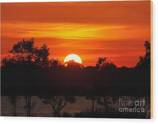 Shades Of Orange Wood Print