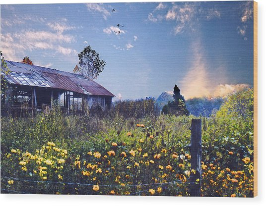Shed In Blue Sky Wood Print by Walt Jackson