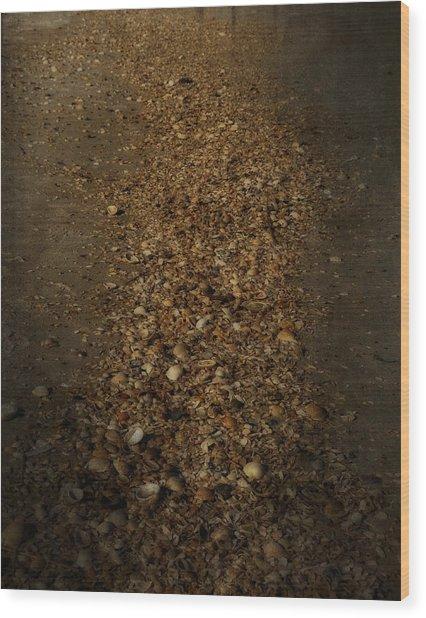 Shell Road Wood Print