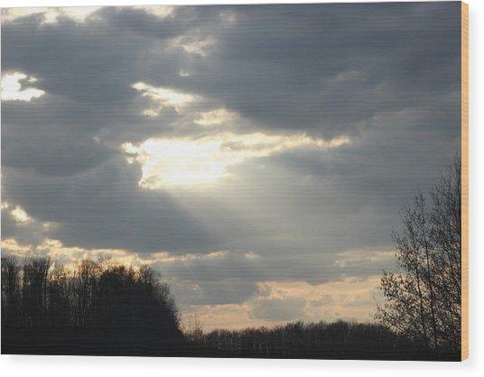 Shining Through Wood Print by Static Studios
