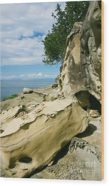 Shoreline Sculpture Wood Print by Frank Townsley