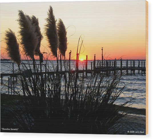 Shoreline Serenity Wood Print