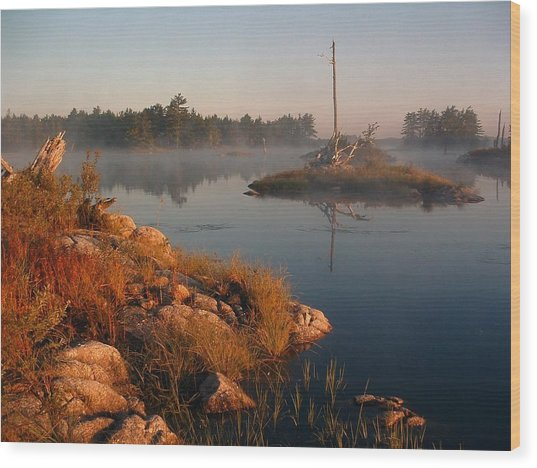 Shorelines Black  River Lake Wood Print