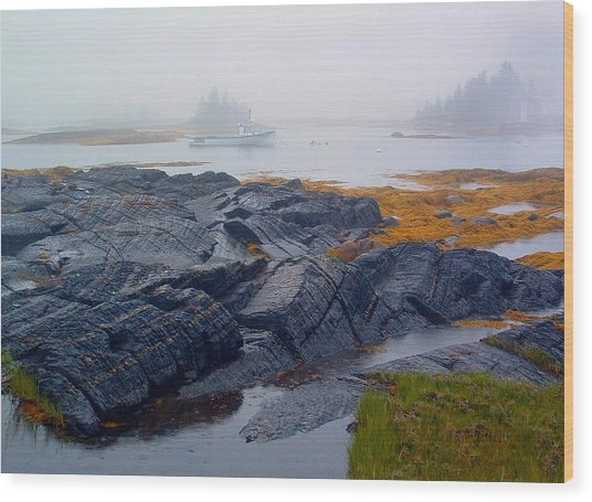 Shorelines Bluerocks Lunenburg Nova Scotia Wood Print
