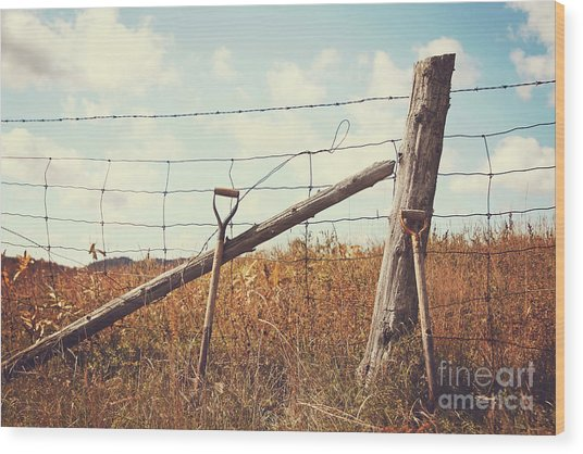 Shovels Leaning Against The Fence Wood Print