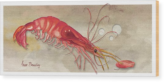 Shrimp With Red Shell Wood Print