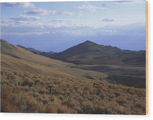 Sierra Escarpment From Whites Wood Print