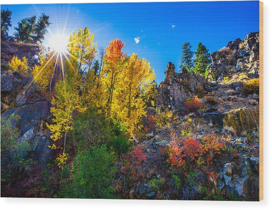 Sierra Nevada Fall Colors Lassen County California Wood Print by Scott McGuire