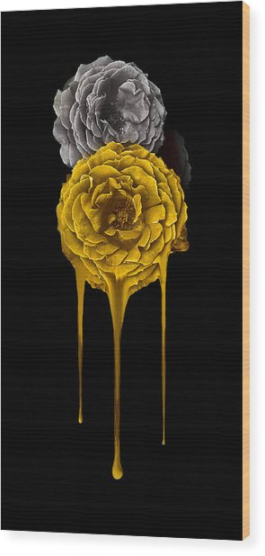 Silver And Gold Wood Print