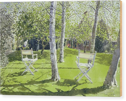 Silver Birches Wood Print