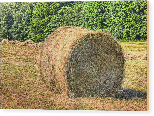 Single Bale Wood Print by Barry Jones