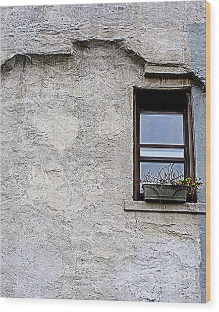 Single Window Wood Print by Maria Scarfone