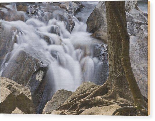 Sinks Cascade And Tree Wood Print