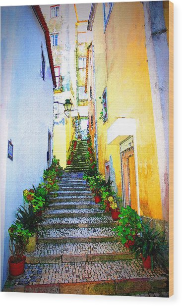 Sintra Portugal Stairs Wood Print by Michael Dantuono