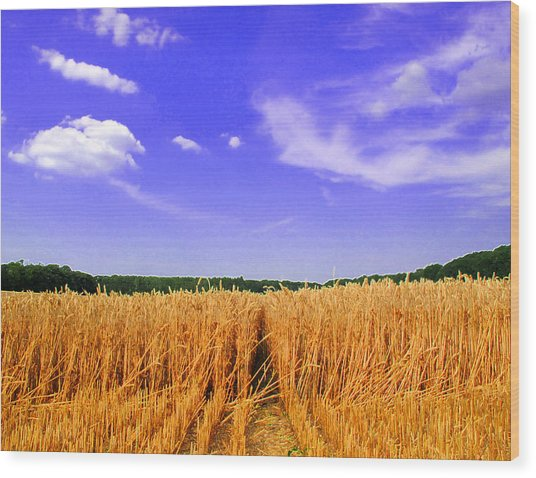 Sky Over The Field 3 Ae  Wood Print by Lyle Crump