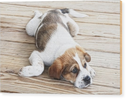 Sleep Where You Fall Wood Print by Tilly Williams