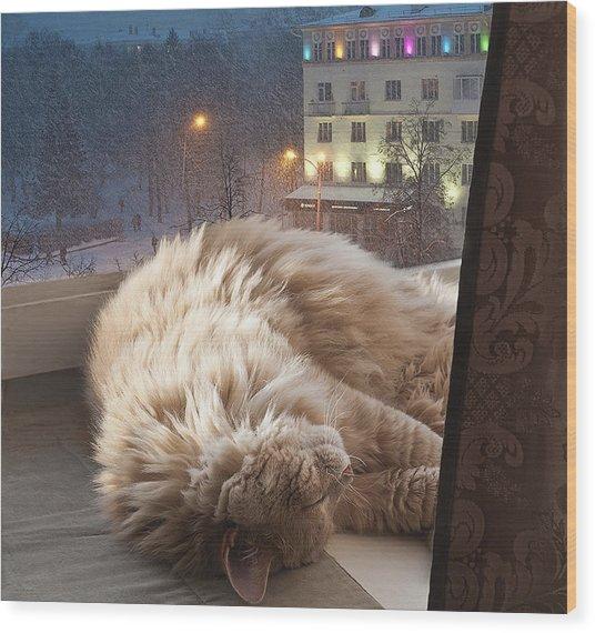 Sleeping Cat Wood Print