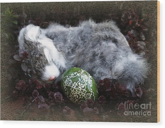Sleeping Easter Bunny Wood Print by Danuta Bennett