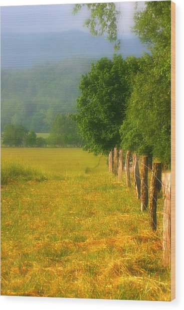 Smoky Mountains Cades Cove Wood Print