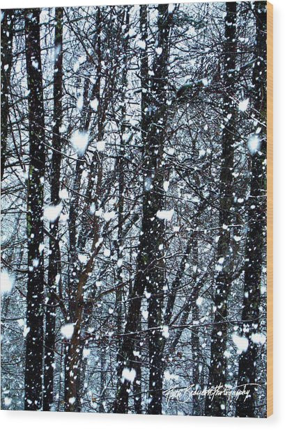Snoball Flakes Wood Print by Ruth Bodycott