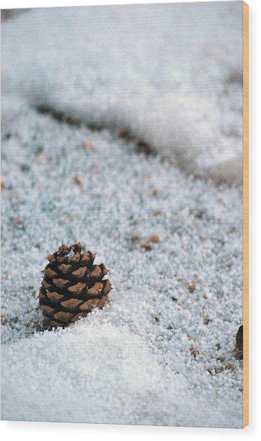 Snow Cone Wood Print