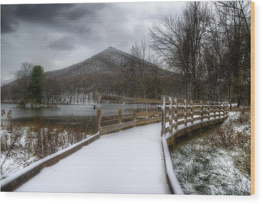 Snow Covered Pathway 3 Wood Print