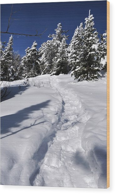 Snowshoe Trail Wood Print