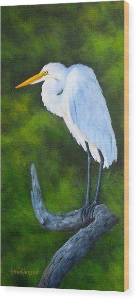 Snowy Egret Wood Print by Francine Henderson