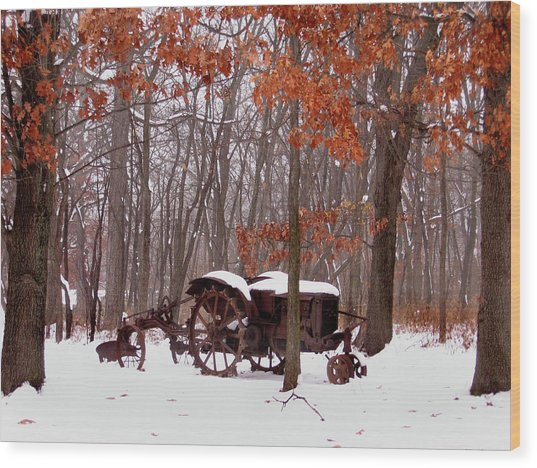 Snowy Implement Wood Print by Ed Golden