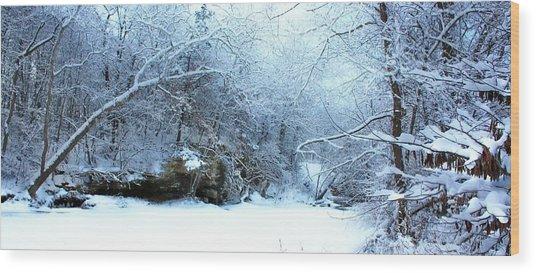 Snowy Morn Wood Print