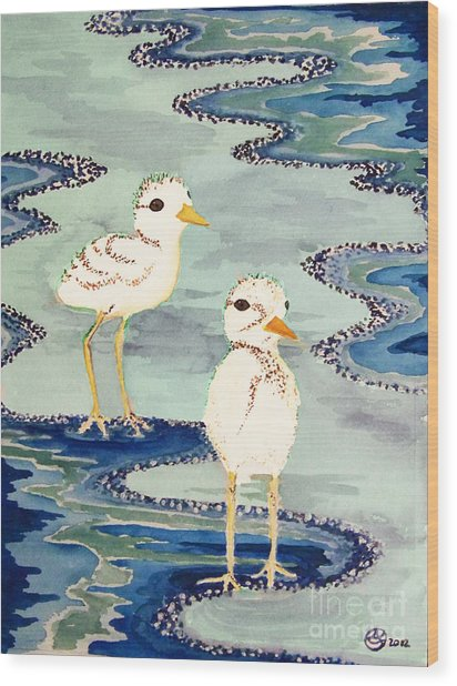 Snowy Plover Chicks Wood Print by Alexandra  Sanders