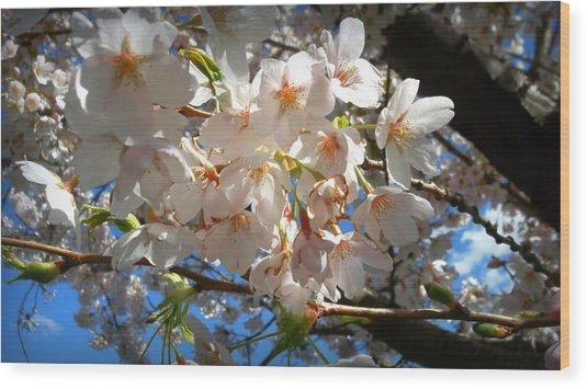 Soft Flowers Wood Print by Lee Yang